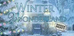 Hidden Object - Winter Wonderland